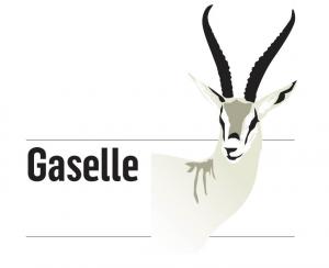 Idium-Gasellebedrift-300x244